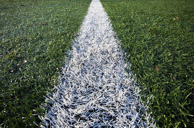 Close-up of line on sports field in Seattle, Washington, USA — Stock Photo