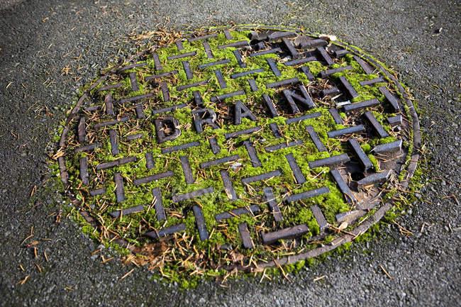 Nahaufnahme der mit Moos bedeckten Schachtabdeckung in Seattle, Washington, Usa — Stockfoto