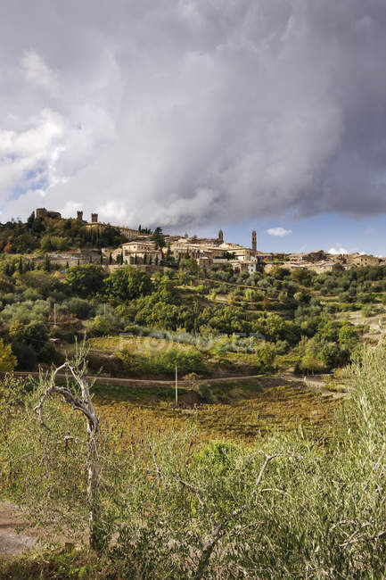 Hill town of Montalcino in Italy, Europe — Stock Photo