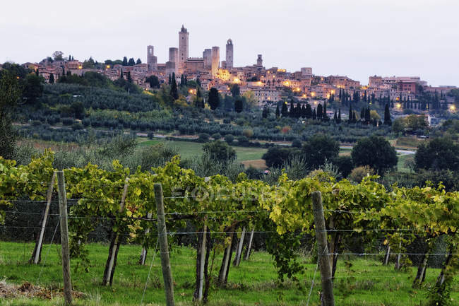 Холм города Пьенца в Тоскане, Италия, Европа — стоковое фото