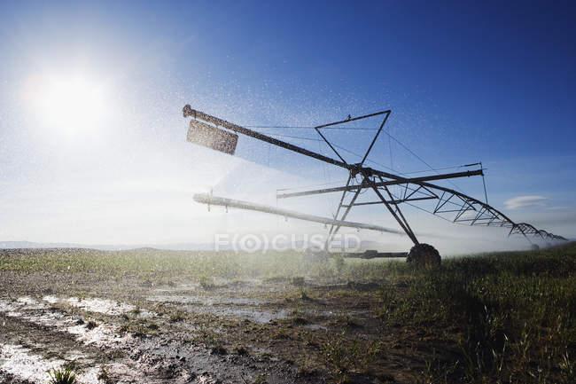 Зрошувальні дощовики поле поливу в Техасі, США — стокове фото