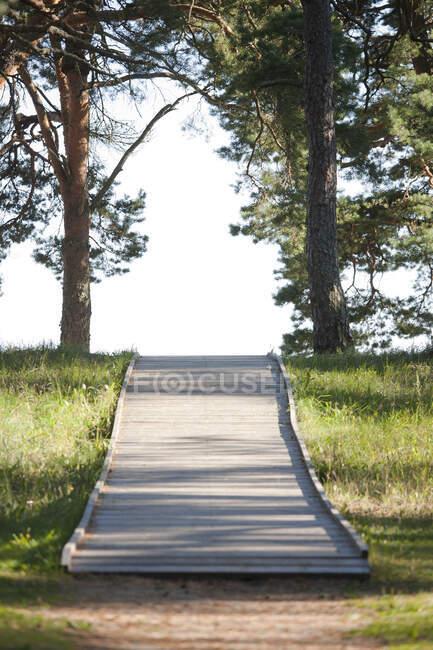Holzsteg durch einen Park — Stockfoto