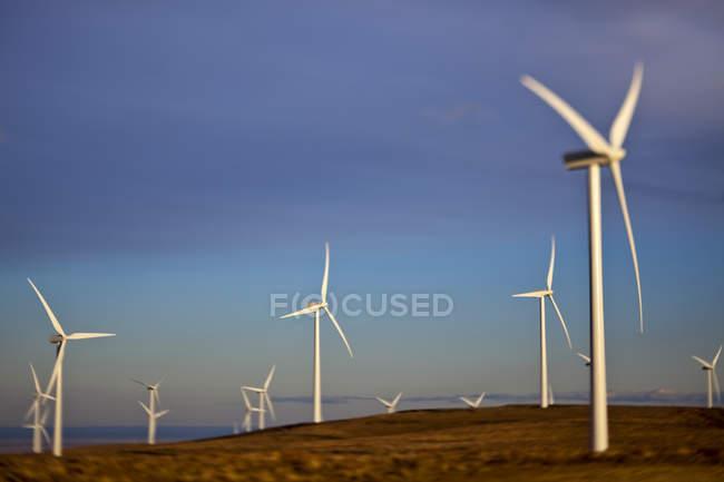 Вітрогенератори обертаються в сільській місцевості — стокове фото