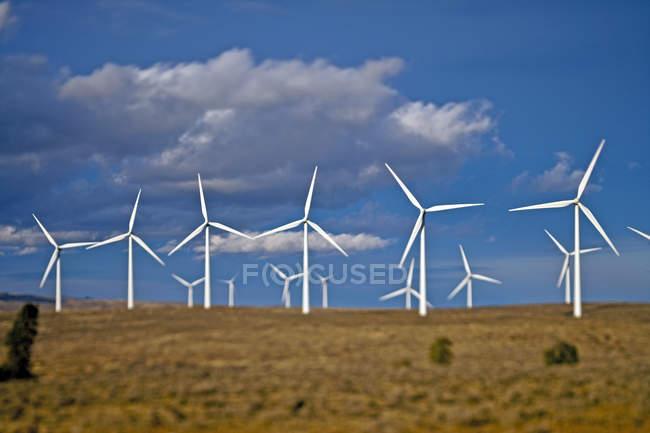 Windkraftanlagen rotieren im ländlichen Feld — Stockfoto