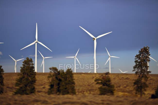 Windkraftanlagen rotieren im Windpark auf dem Land — Stockfoto