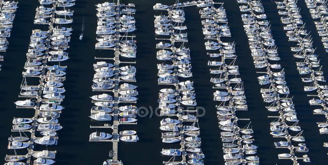Vista aérea de yates en marina en Seattle, Washington, Usa - foto de stock