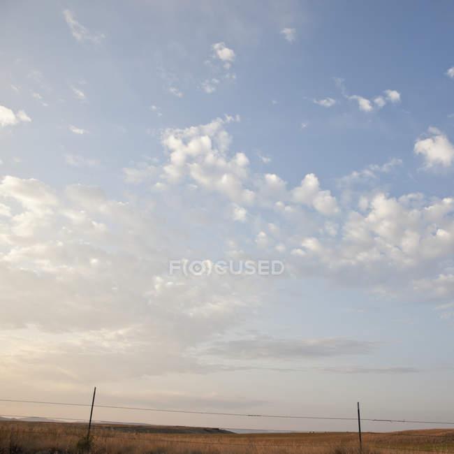 Recinzione in filo spinato con paesaggio erboso — Foto stock