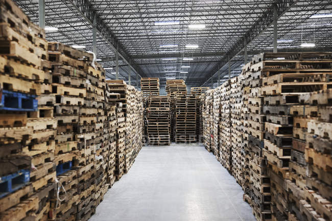 Palettes empilées dans l'entrepôt, Sumner, Washington, Etats-Unis — Photo de stock