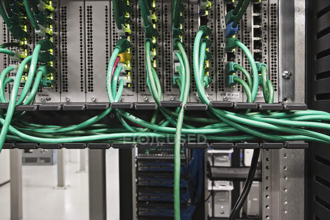 Close-up of computer cords bundles in data center server — Stock Photo