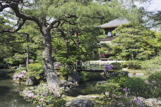 Japanese garden building and pond in Kyoto, Japan — Stock Photo