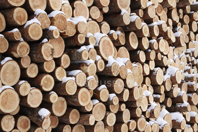 Stack of wooden logs with snow in winter, full frame — Stock Photo