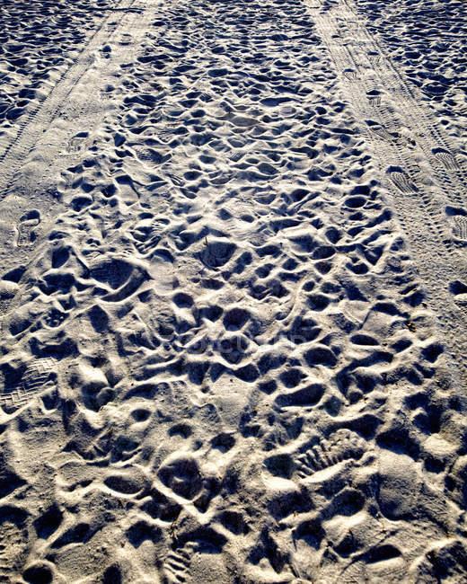 Trilhas e pegadas do pneu na areia na praia — Fotografia de Stock