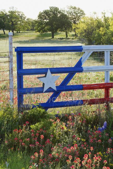 Огорожа з Техасом лакофарбова в сільській місцевості в США — стокове фото