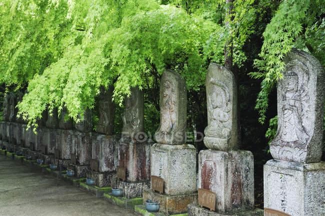Веслувати духовних ідолів в Острів Міяджіма, Префектура Хіросіма, Японія — стокове фото