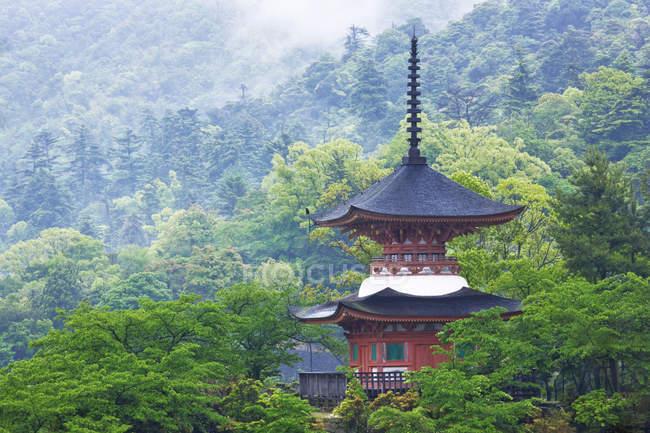 Pagode dans les bois de l'île de Honshu, Japon, Asie — Photo de stock