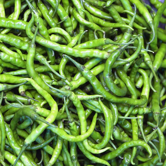 Close-up of fresh green beans, full frame - foto de stock
