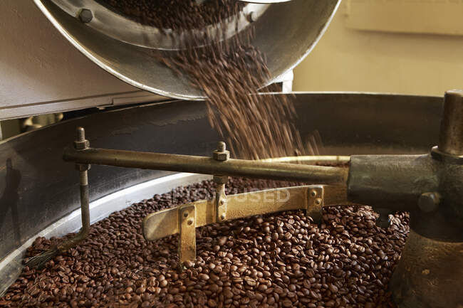 Coffee beans roasting in industrial kettle — Stock Photo