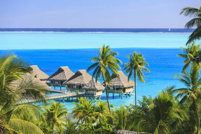 Palme con vista sul resort tropicale, Bora Bora, Polinesia Francese — Foto stock