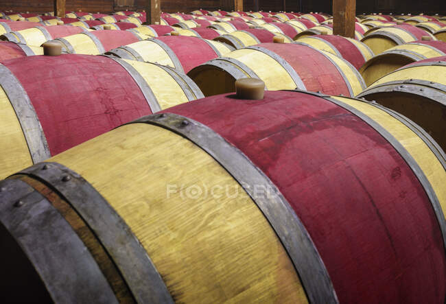 Close up of wine barrels in cellar — Stock Photo
