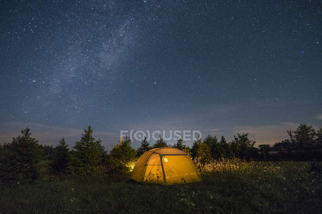 Illuminated camping tent under starry sky — Foto stock