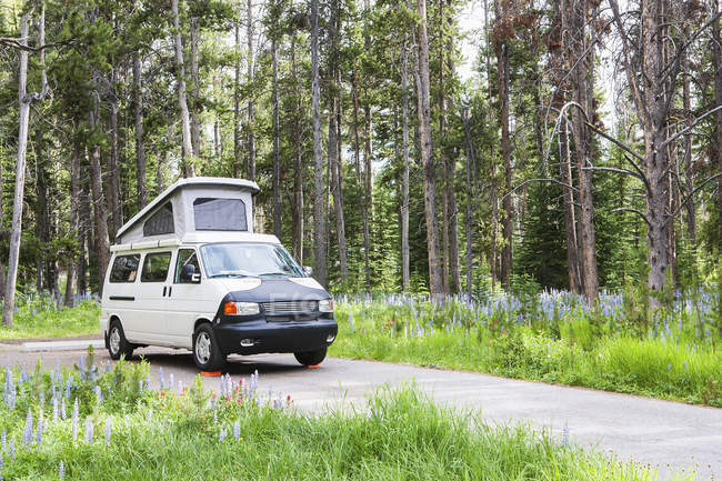 Camper van on rural road, Pioneer Mountains Parkway, Montana, United States — Fotografia de Stock