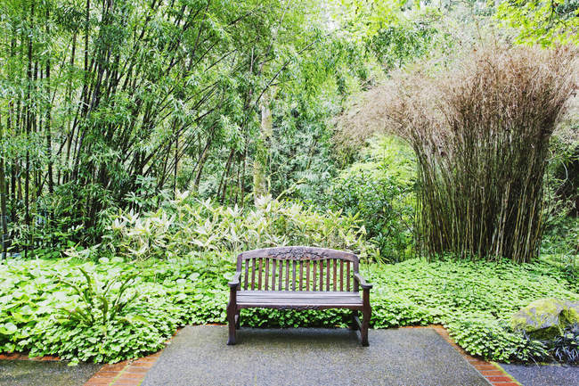 Banc dans un parc luxuriant, Portland, Oregon, États-Unis — Photo de stock