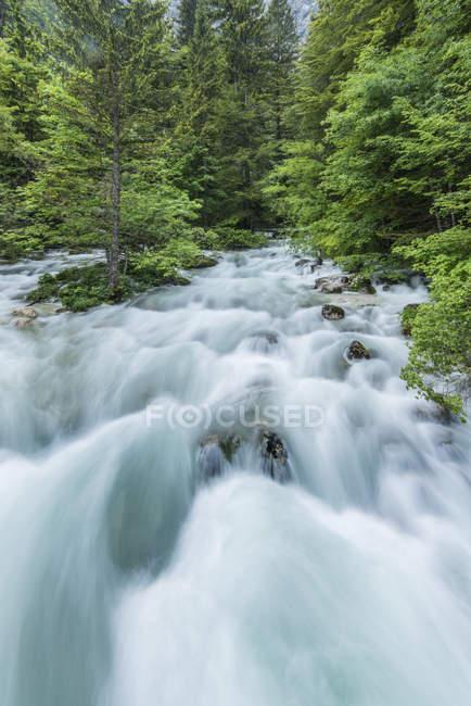 Vista sfocata dell'acqua del torrente roccioso nella foresta — Foto stock