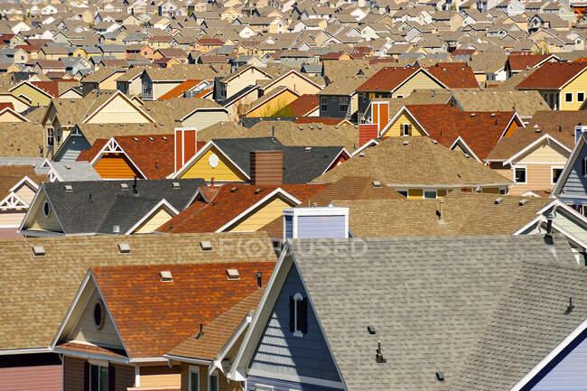 Rooops in suburban development, Colorado Springs, Colorado, United States — стоковое фото