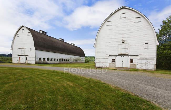 Vieilles granges sur la ferme, Olympia, Washington, Etats-Unis — Photo de stock