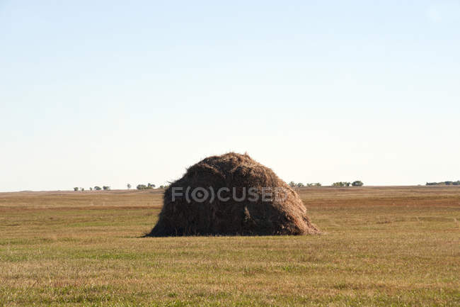 Large hay stack in countryside field — Stock Photo