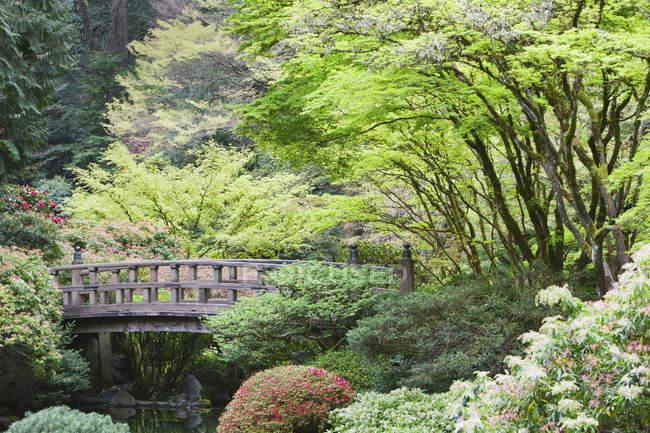 Wooden footbridge in Japanese Garden, Portland, Oregon, United States — Stock Photo