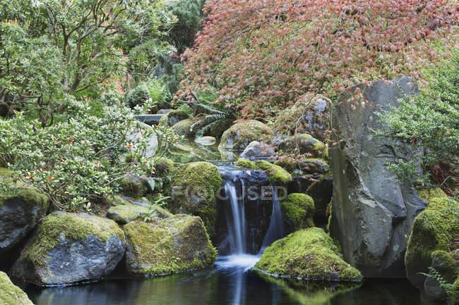 Waterfall and still pool, Portland, Oregon, United States — Stock Photo