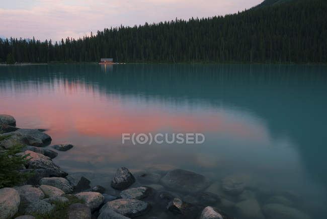 Forest treetops reflecting in still remote lake water — Stock Photo
