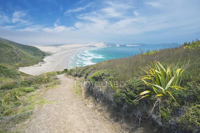 Dirt path on coastal hillside, Te Werahi, Cape Reinga, New Zealand — Stock Photo
