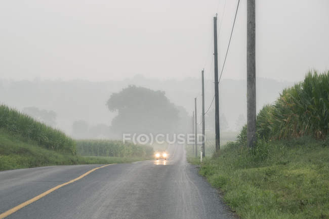 Car with lights approaching on foggy two-lane road — Stock Photo