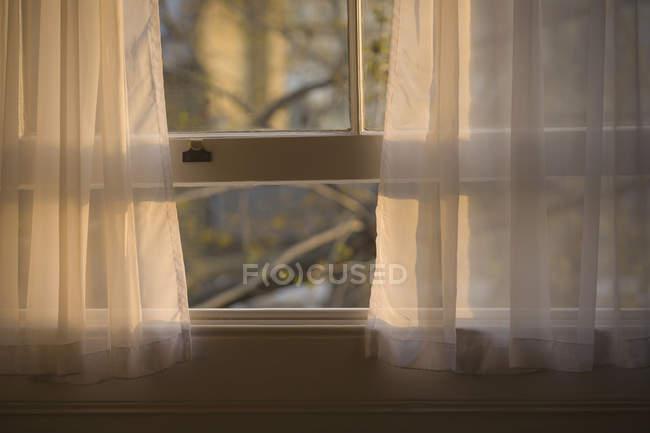 Чисто штори у відкритому вікні, Крупний план — стокове фото