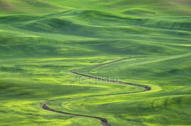 Drain d'irrigation sinueux à travers les collines dans le paysage rural de Palouse, Washington, États-Unis — Photo de stock