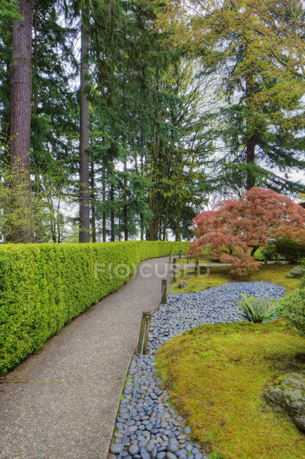 Hedges and walkway in Japanese Garden, Portland, Oregon, United States — Stock Photo
