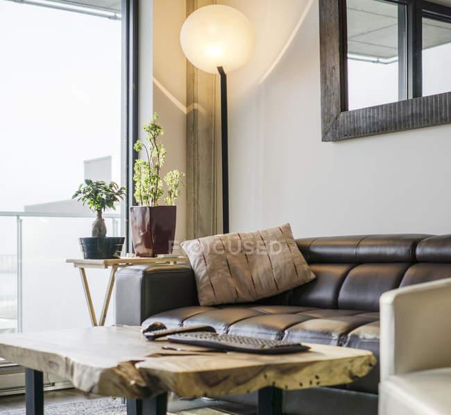 Divano, piante in vaso e poltrona vicino alla finestra del soggiorno — Foto stock