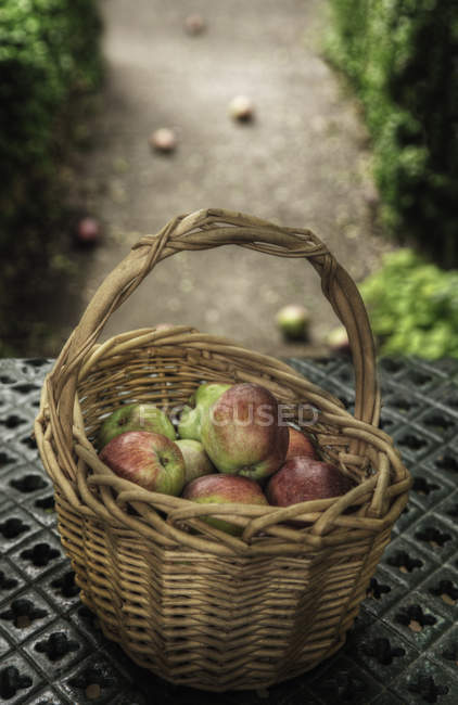 Basket of apples on iron bench outdoors — Stock Photo