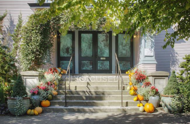 Citrouilles et plantes en pot sur les marches avant de la maison — Photo de stock