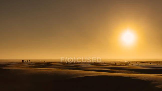 Sunrise over beach sand, Grayland Beach State Park, EUA — Fotografia de Stock