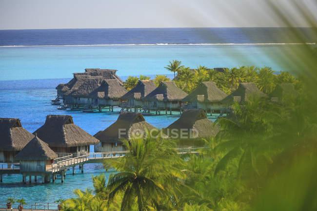 Palmeras con vistas al complejo tropical, Bora Bora, Polinesia Francesa - foto de stock