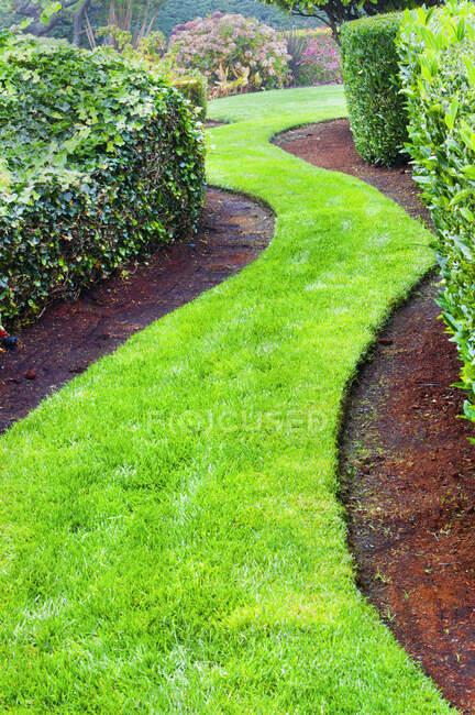 Caminho de grama enrolamento em jardim paisagístico — Fotografia de Stock