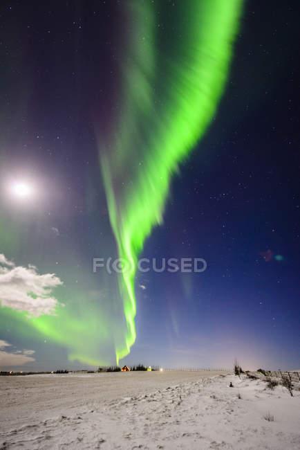 Северное сияние в небе над снежным пейзажем в Вике, Исландия — стоковое фото
