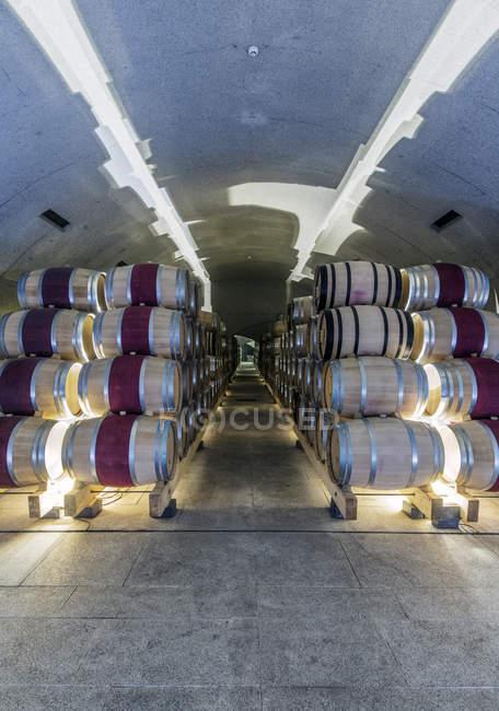 Barriques de vieillissement dans la cave à vin, Peso da Regua, Vila Real, Portugal — Photo de stock