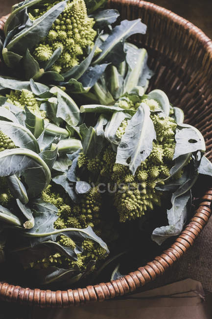 Close-up of freshly harvested green Romanesco cauliflowers in wicker basket. — Stock Photo