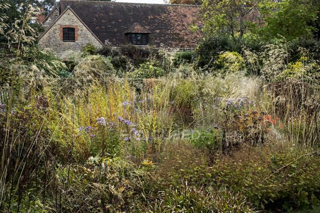Prairie planting scheme in garden with grass and autumn foliage in garden border in Oxfordshire, England — Stock Photo