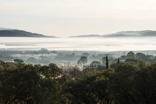 Misty landscape with trees and hills in distance. — стокове фото