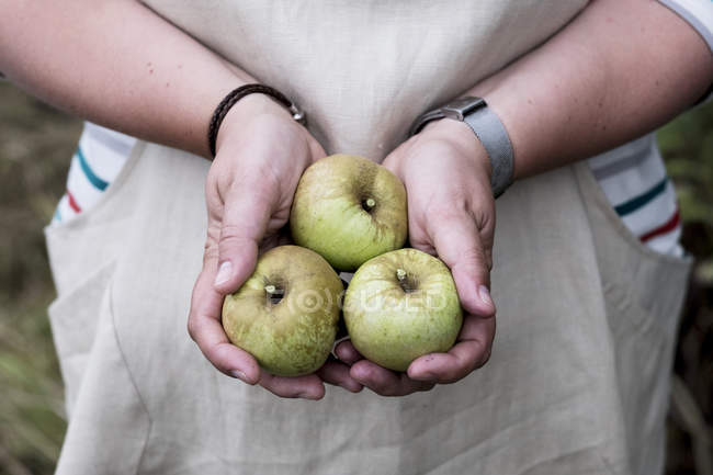 Close-up of female hands holding three green apples. — Stock Photo